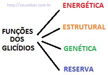 Carboidratos-Glicídios funções e classificações